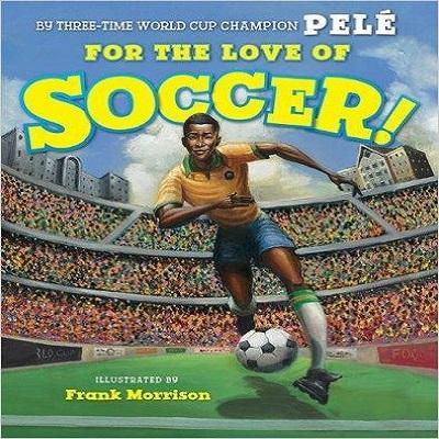 soccer wordpress
